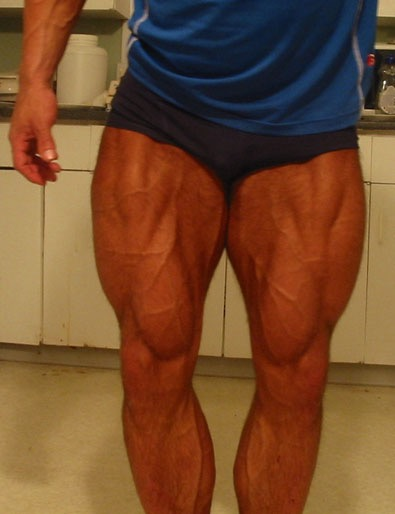 properly built quadricep muscles